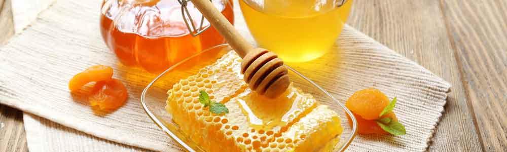 Honig aus der Pfalz